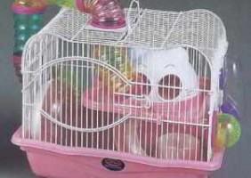 מכירה: כל סוגי הכלובים לאוגרים,ארנבות ,תוכים ועוד. ניתן גם לרכוש בעלי חיים.